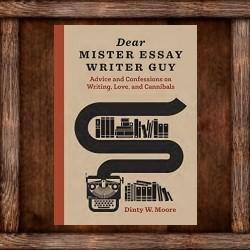 Dear Mister Essay Writer Guy: a Review