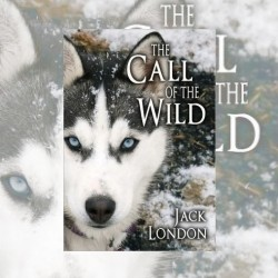 How Clear Should the Message Be? The Call of the Wild, by Jack London