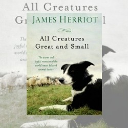 Poignant Little Stories: All Creatures Great and Small, by James Herriot